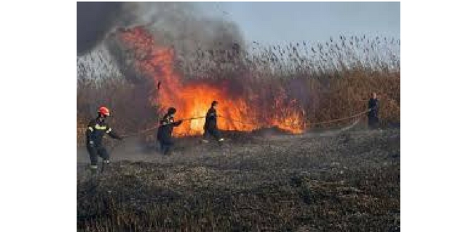 Ευτυχώς, η πυρκαγιά ήταν στις καλαμιές…