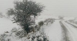 Έπεσαν τα πρώτα χιόνια στη Λευκάδα!