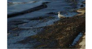 Εκπαίδευση της Ομάδας Αντιμετώπισης Θαλάσσιας Ρύπανσης