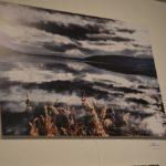 Η ομαδική Έκθεση Φωτογραφίας με θέμα «ΚΑΣΤΟΡΙΑ – ΑΡΧΟΝΤΙΑ»