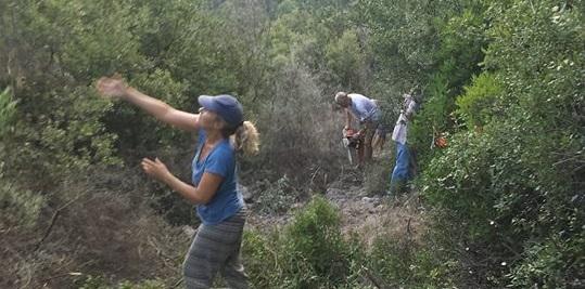 Συνεχίζονται οι καθαρισμοί μονοπατιών στο Νιοχώρι