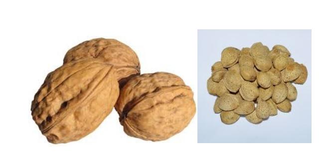 Το σχόλιο της ημέρας: «Καρύδια» κι αμύγδαλα