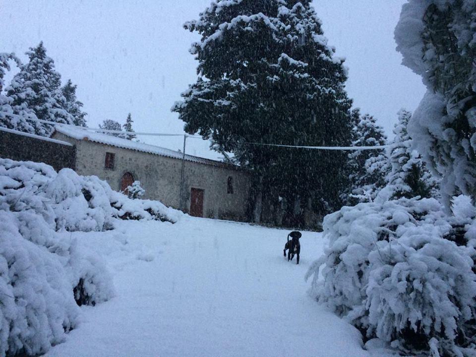 Ξενάγηση στο πανέμορφο χιονισμένο Νιοχώρι