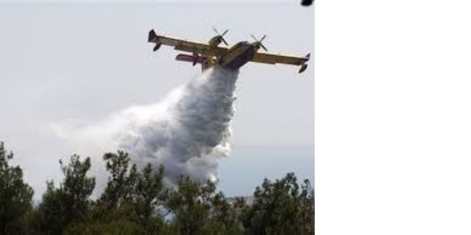 Φωτιά στην περιοχή Καλαμιτσίου