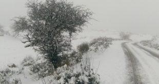 Η Ζηνοβία φέρνει χιόνια, παγωνιά και θύελλες!