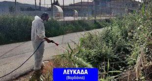 Σε εξέλιξη το πρόγραμμα καταπολέμησης των κουνουπιών